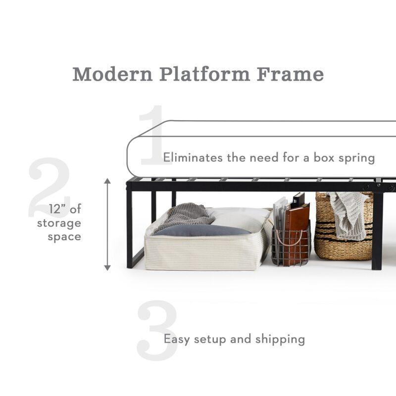 Modern Metal Frame